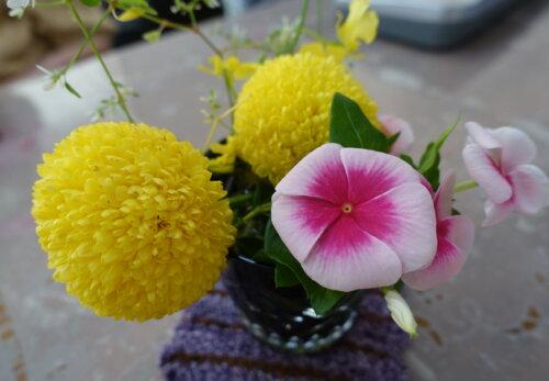 鹿児島スター俱楽部よしの 花 花瓶